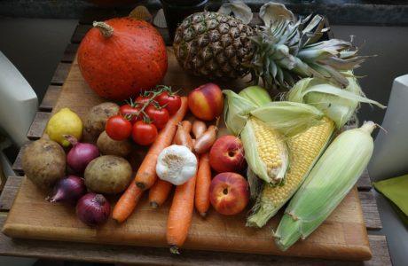 drawdown plant based diet